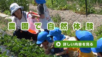 農園で自然体験